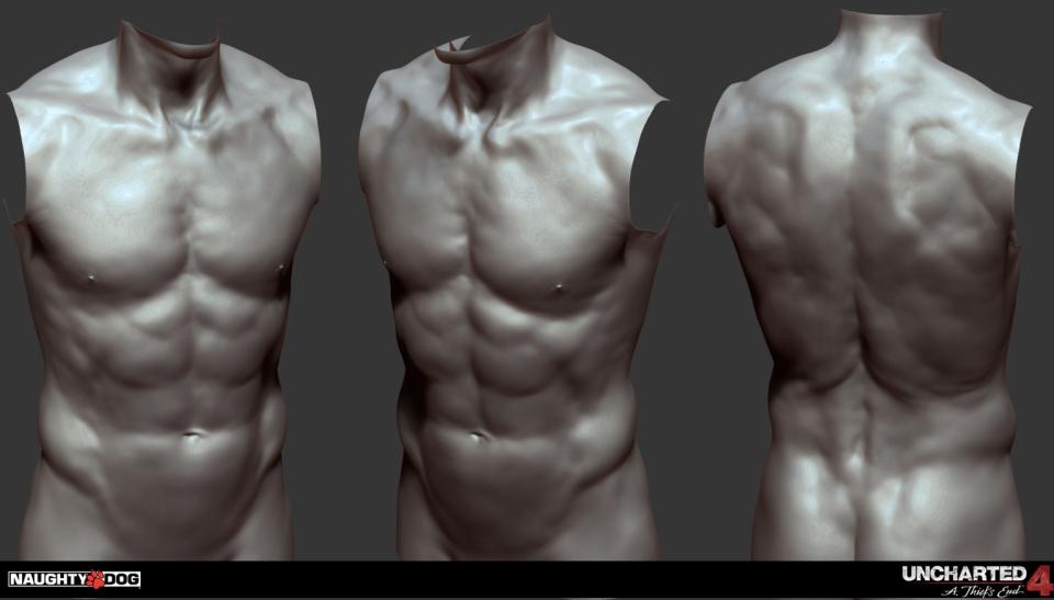 torso-01